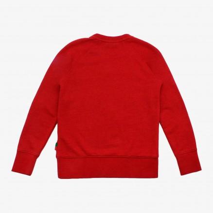 Sweatshirt FPF JR